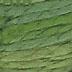 PEV 305 - Green Foliage