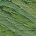 PEWV 305 - Green Foliage